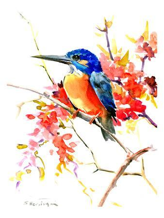 https://imgc.artprintimages.com/img/print/common-kingfisher_u-l-f8eitd0.jpg?p=0