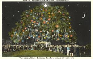 Community Christmas Tree, Wilmington, North Carolina