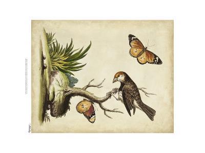 Companions in Nature II-George Edwards-Art Print