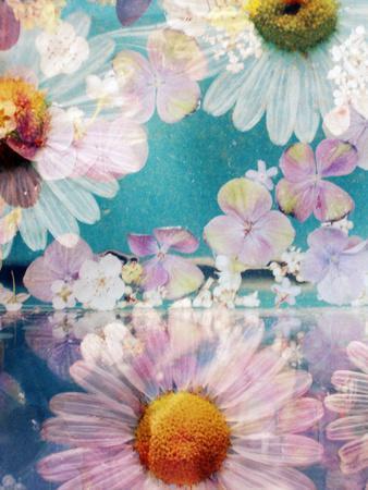 https://imgc.artprintimages.com/img/print/composing-of-blossoms-and-water_u-l-q11ywd20.jpg?p=0