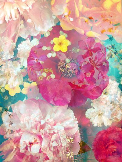 Composing of Blossoms-Alaya Gadeh-Photographic Print