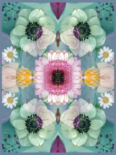 Composing, Symmetrical Arrangement of Flowers in Pastel Shades-Alaya Gadeh-Photographic Print