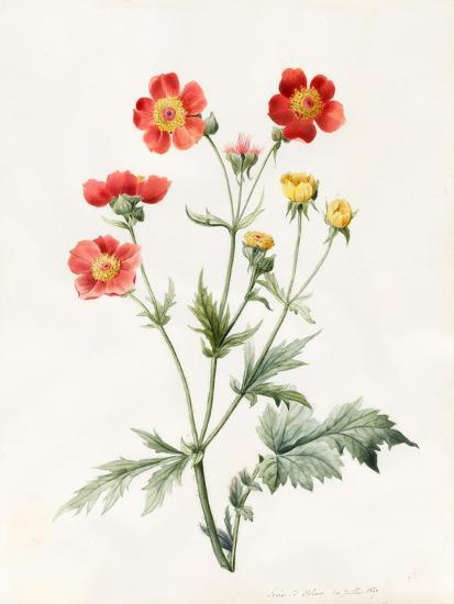 Composite, 1827-Louise D'Orleans-Giclee Print