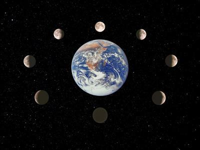 https://imgc.artprintimages.com/img/print/composite-image-of-the-phases-of-the-moon_u-l-pzjozi0.jpg?p=0