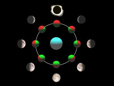 Composite Time-lapse Image of the Lunar Phases-John Sanford-Photographic Print