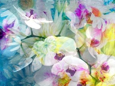 Composition with Flowers-Alaya Gadeh-Photographic Print