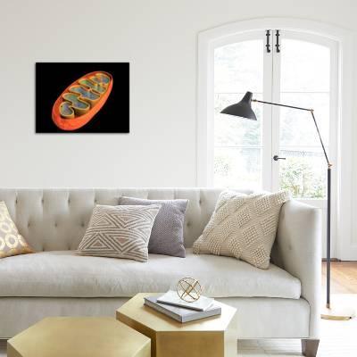 Conceptual Image of Mitochondria Art Print by   Art com