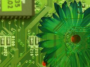 Conceptual Shot of Flower Growing on Computer Circuit Board