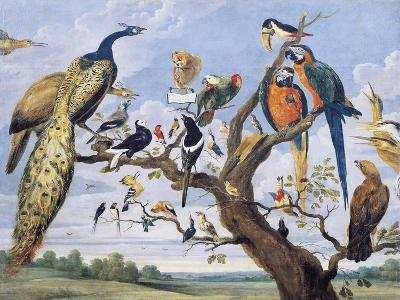 Concert of Birds, by Paul De Vos (Circa 1591-1678), Netherlands, 17th Century-Paul de Vos-Giclee Print
