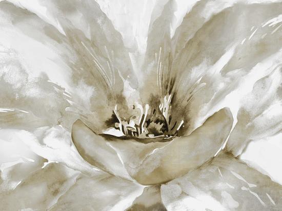 Concerto Fawn-Tania Bello-Giclee Print