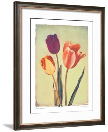 Concerto Verde I-Amy Melious-Framed Art Print