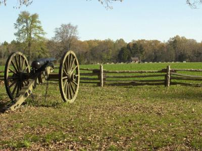 Confederate Artillery Aimed at Peach Orchard Next to Manse George's Cabin
