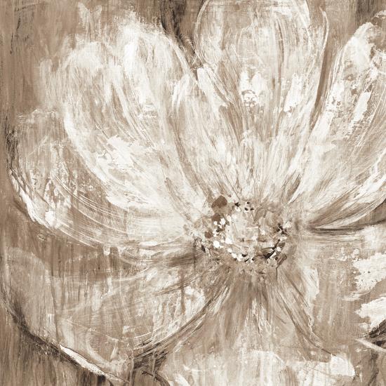 Confetti Bloom II-Philip Brown-Art Print