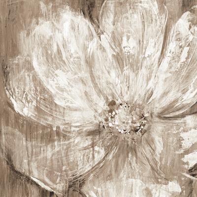 https://imgc.artprintimages.com/img/print/confetti-bloom-ii_u-l-f7tmht0.jpg?p=0