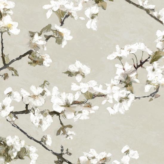 Confetti Bloom II-Tania Bello-Giclee Print