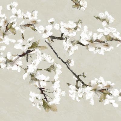 https://imgc.artprintimages.com/img/print/confetti-bloom-iii_u-l-f97jjq0.jpg?p=0