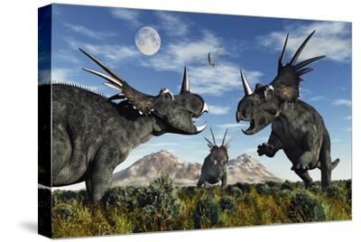 Confrontation Between Male Styracosaurus Dinosaurs