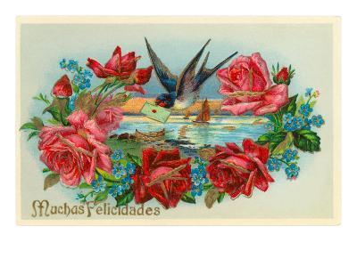 Congratulations, Muchas Felicidades--Art Print