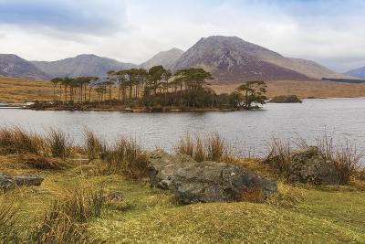 Connemara, County Galway, Ireland-Ken Welsh-Photographic Print