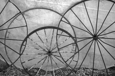 USA, Florida, Plant City, Old Metal Wagon Wheels by Connie Bransilver