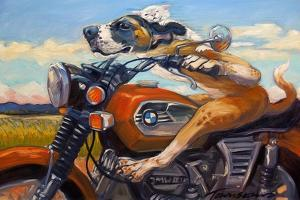Fast and Furriest by Connie R. Townsend