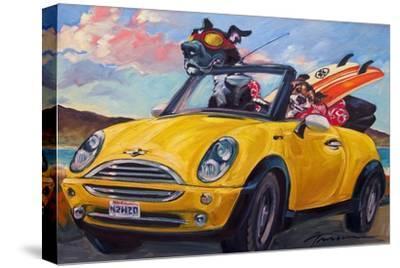 Sunup Surfdogs