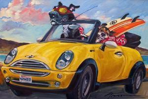 Sunup Surfdogs by Connie R. Townsend