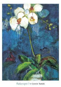 Phalaenopsis I by Connie Tunick