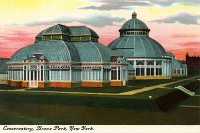 Conservatory, Bronx Park