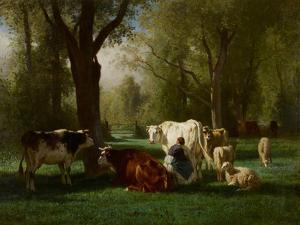 Landscape with Cattle and Sheep, 1852-8 by Constant-emile Troyon