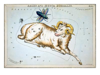 Constellation: Aries-Sidney Hall-Giclee Print