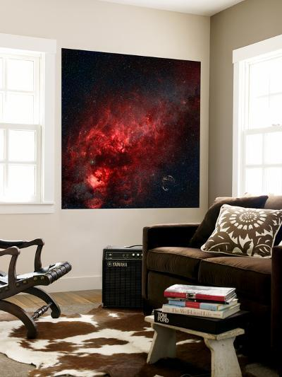 Constellation Cygnus with Multiple Nebulae Visible-Stocktrek Images-Wall Mural