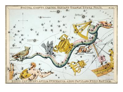 Constellation: Hydra-Sidney Hall-Giclee Print
