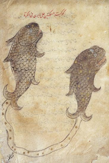 Constellation Pisces from the Book of Fixed Stars by Azophi--Giclee Print