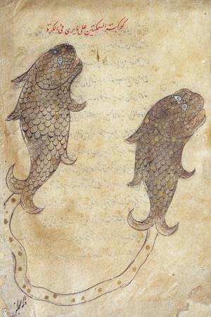 https://imgc.artprintimages.com/img/print/constellation-pisces-from-the-book-of-fixed-stars-by-azophi_u-l-pptp5v0.jpg?p=0