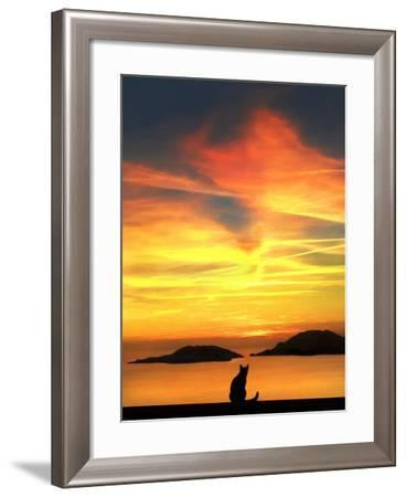 Contemplation-Jon Bertelli-Framed Photographic Print