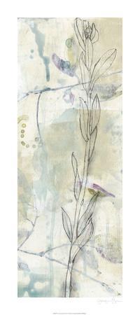 https://imgc.artprintimages.com/img/print/contour-stem-ii_u-l-f976uw0.jpg?p=0