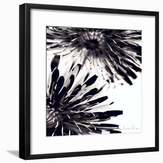 Contrastoflora II-Jean-François Dupuis-Framed Premium Giclee Print