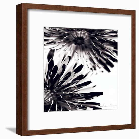 Contrastoflora II-Jean-François Dupuis-Framed Art Print