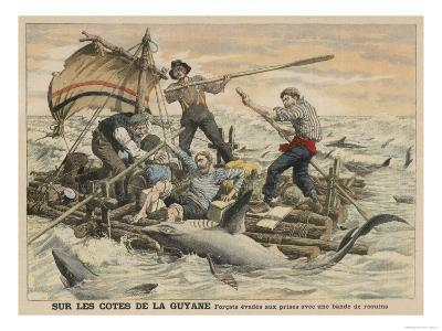 Convicted Robber Eddie Guerin Escaping from Devil's Island with Fellow-Cons Meets Sharks off Guyana--Giclee Print