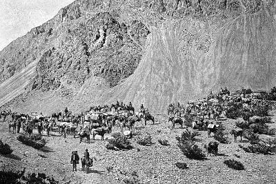 Convoy of Muleteers at the Foot of the Cordillera, South America, 1895--Giclee Print