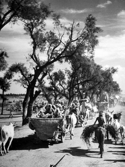 Convoy of Sikhs Migrating to East Punjab After the Division of India-Margaret Bourke-White-Photographic Print