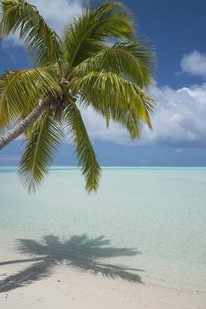 Cook Islands, Aitutaki. One Foot Island. White Sand Beach with Trees-Cindy Miller Hopkins-Photographic Print