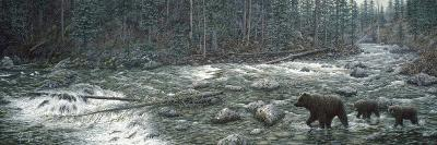 Cool Creek-Jeff Tift-Giclee Print