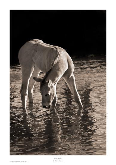 Cool Water-Robert Dawson-Art Print