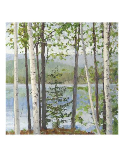 Cooper Lake I-Elissa Gore-Art Print