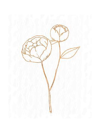 https://imgc.artprintimages.com/img/print/copper-botanical-1_u-l-q19q7ea0.jpg?p=0