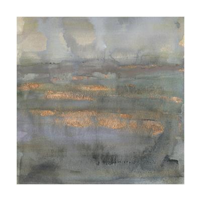 https://imgc.artprintimages.com/img/print/copper-emulsion-i_u-l-q1boyz50.jpg?p=0