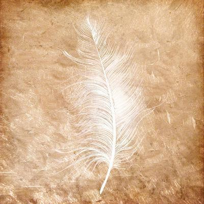 Copper Feathered 1-Kimberly Allen-Art Print
