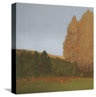 Copper Grove II-Caroline Gold-Stretched Canvas Print